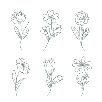 잎 컬렉션 손으로 그린 꽃