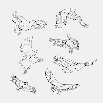 Hand drawn flying birds collection