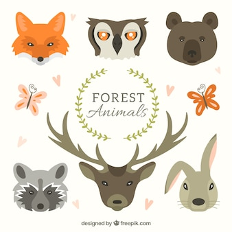 手描き森の動物コレクションに直面しています