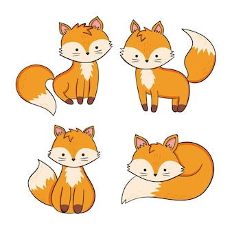 Hand drawn fox collection