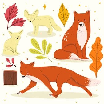 Нарисованная рукой коллекция иллюстрации лисы