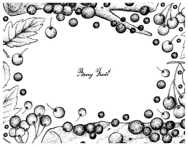 Hand drawn frame of american cranberries and jabuticaba