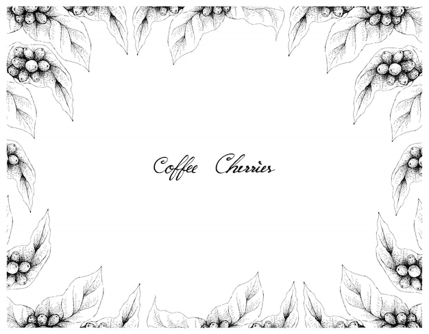 Hand drawn frame of coffee berries with coffee beans