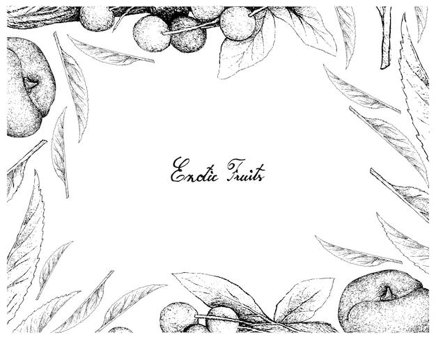 Hand drawn frame of damson plum and angel peach