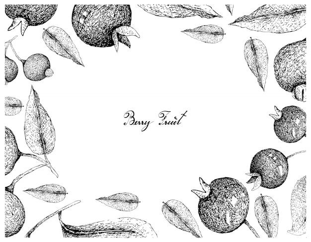 Hand drawn frame of grumichama cherries and guabiju fruits