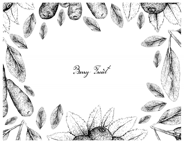Hand drawn frame of honeyberries and huckleberries