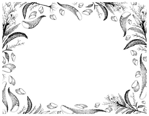 Нарисованная от руки рамка карият с алоэ вера