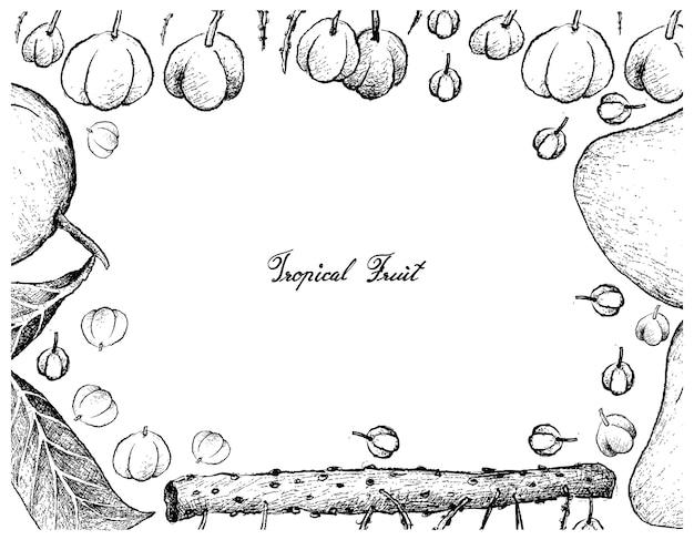 Hand drawn frame of otaheite gooseberry and mango fruits