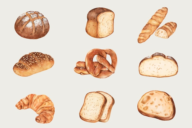 Hand drawn fresh bread set
