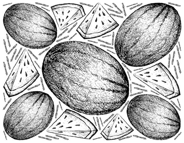 Hand drawn of fresh watermelon llustration