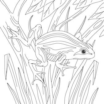 Rana disegnata a mano per la colorazione
