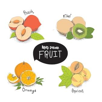 손으로 그린 과일 디자인 요소