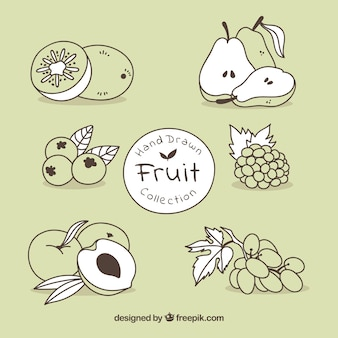 手描きのフルーツセット