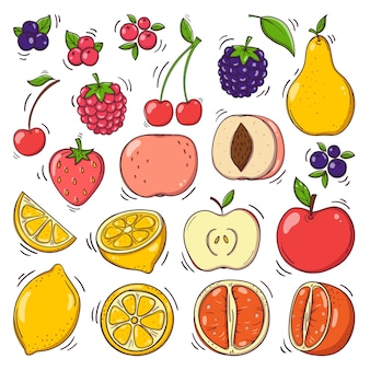 Hand drawn fruits and berries set.