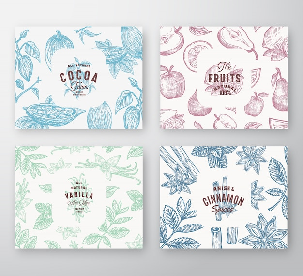 Hand drawn fruits, cocoa beans, mint, nuts and spices cards set. abstract  sketch pattern backgrounds collection with classy retro typography and vintage labels.
