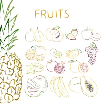Hand drawn fruits collection