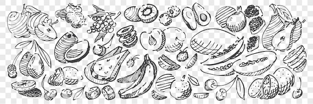 Рисованной фрукты каракули набор
