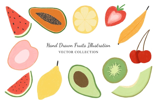 Hand drawn fruits illustration clipart vector collection