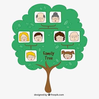Hand-drawn genealogical tree