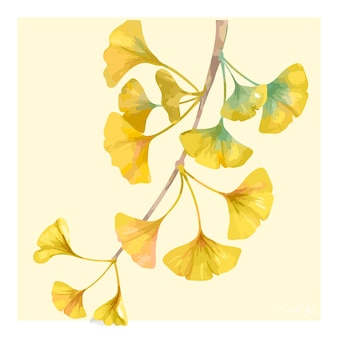 손으로 그린 은행 나무 꽃 그림