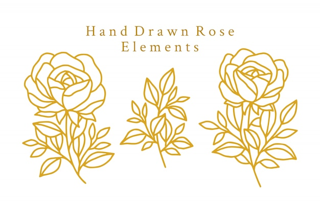 Hand drawn gold rose logo elements