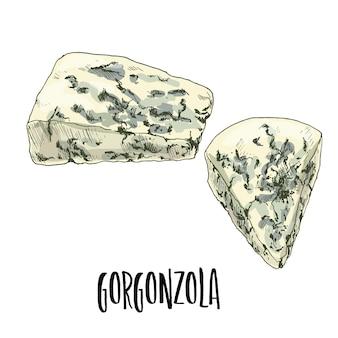 Hand drawn gorgonzola cheese illustration