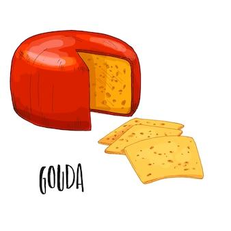 Нарисованная рукой иллюстрация сыра гауда