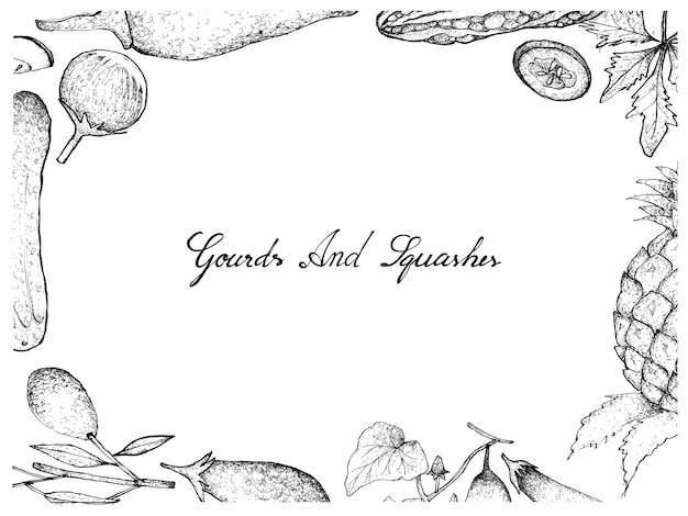 Hand drawn of gourd and squash fruits frame