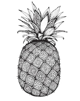 Hand drawn graphic ornate pineapple fruit. black and white