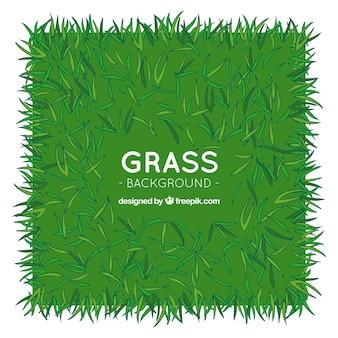 Hand-drawn grass background