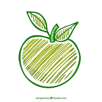 Hand drawn green apple
