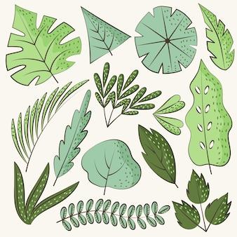 手描きの緑の葉パック