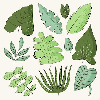 Hand drawn green leaves