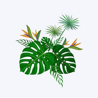 Hand drawn greenery decorative bouquet, composed of monstera leaves, strelitzia flower, and papyrus plant