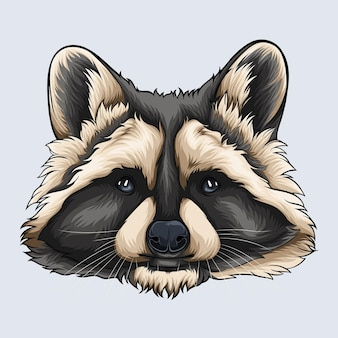Hand drawn grey and beige raccoon face illustrated with shadows and lights isolated on white background