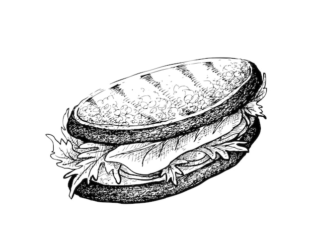 Hand drawn of grilled sandwich on white background
