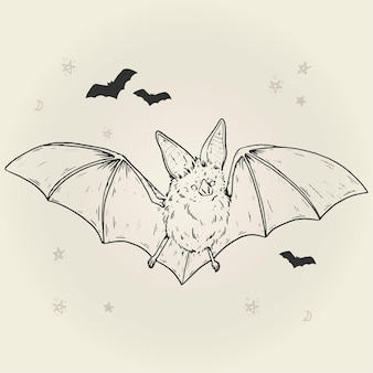 Hand drawn halloween bat