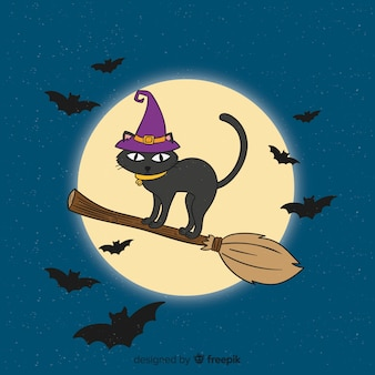 Hand drawn halloween cat on broom