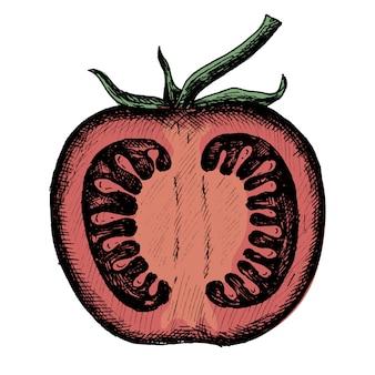 Ручной нарисованный половинным свежим помидором