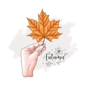Hand drawn hand holding maple leaf 1