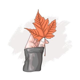 Hand drawn hand holding maple leaf 4