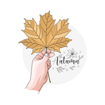 Hand drawn hand holding maple leaf