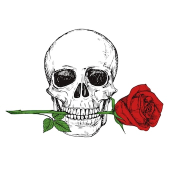Hand drawn happy human skull with red rose