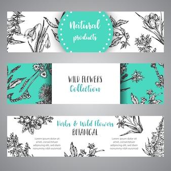 Рука нарисованные травы и дикие цветы баннер