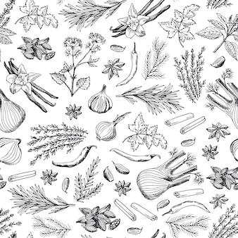 Hand drawn herbs and spices background or pattern