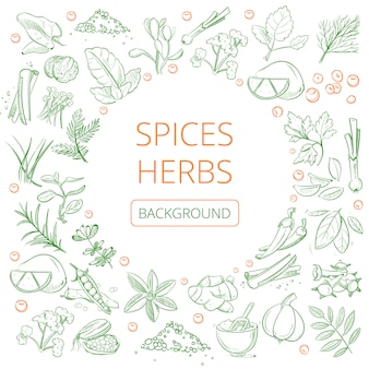 Hand drawn herbs and spices background