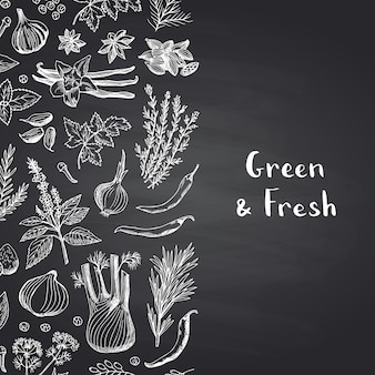 Hand drawn herbs and spices on black chalkboard background