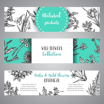 Hand drawn herbs and wild flowers banner