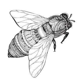 Hand drawn honey bee in zentangle style.