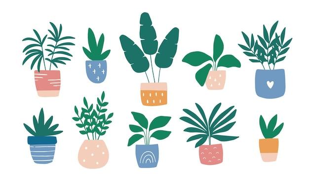 화려한 냄비 그림 세트에서 손으로 그린 집 식물.
